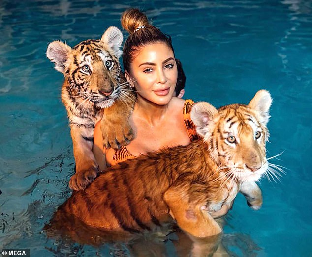 Stunning:Larsa's trip included a stunning encounter with two tiger cubs in a pool. The cubs, named Bashkar and Balavan, were both as large as medium-sized dogs