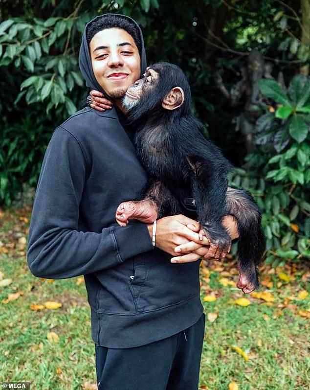 Back in black: Preston, who wore an all-black set of sweats, also got to hold one of the chimpanzees, and he broke into a smile as it reached up to nuzzle his chin