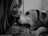 Kaley Cuoco mourns the death of her dog Norman
