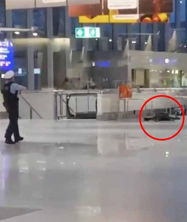 Police shoot gunman at Germany's Frankfurt International Airport