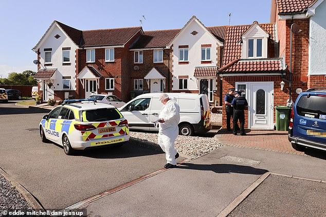 Murderer Hoadley killed his estranged wife in her bed as she slept in their Eastbourne house