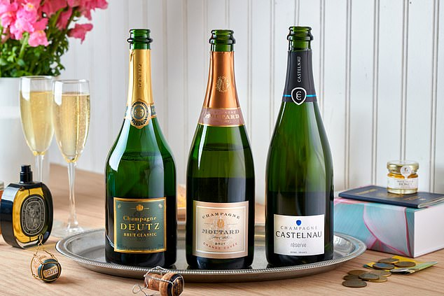 American Airlines has launched an at-home inflight wine experience called Flagship Cellars. Pictured are some of the bottles previously only available onboard an AA flight that flyers can now have delivered to their door