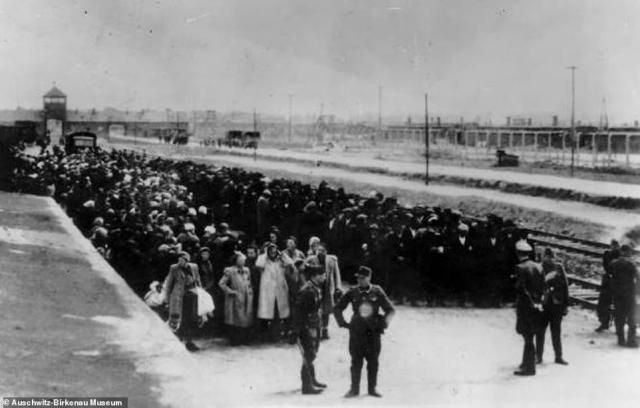 The rare photos taken at Auschwitz by Hitler's SS guards show not only the arrival of Hungarian Jews at the camp - on rail tracks built specifically in 1944 for the extermination operation - but the long queues as they waited to walk to gas chambers. The above photo shows SS guards standing in front of a long queue of people who had been selected for death, rather than work.