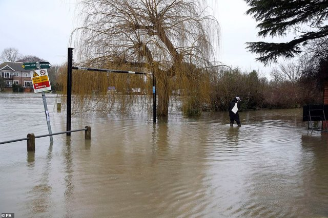 A man walks through flood water today in Laleham-on-Thames, Surrey, after the banks of the River Thames burst