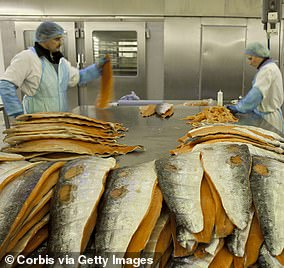 Scampi brand Whitby Seafoods has claimed that the customs rules hurt companies who are reliant on fresh-caught fish to be moved seamlessly between Great Britain and Northern Ireland. Stock photo used