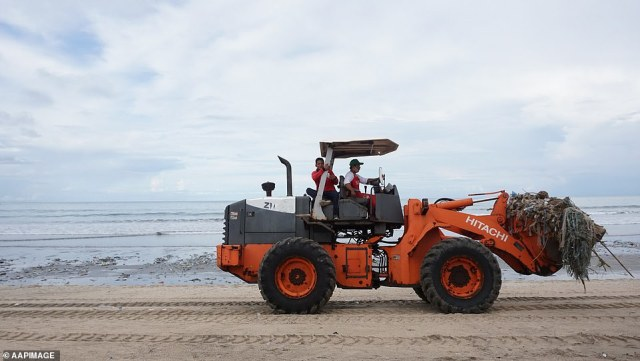 The cleaning up system does not have adequate equipment and resources to quickly remove rubbish from beaches. Currently, they use trucks and loaders (pictured on Kuta Beach on Saturday)