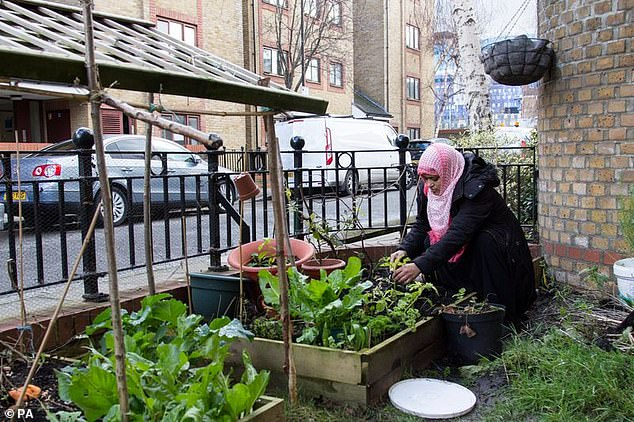 The RHS said it hopes a surge in interest during the pandemic can help fill gardens with plants