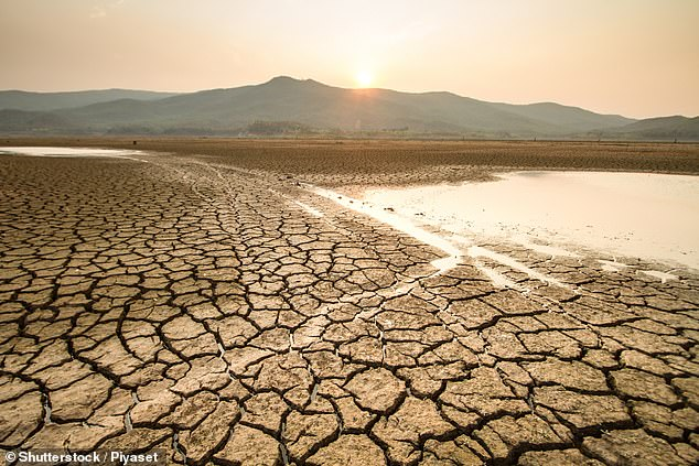 Wang and colleagues believe that this new technology could bring new and greater levels of rainfall to areas of the world that suffer from drought. Stock image