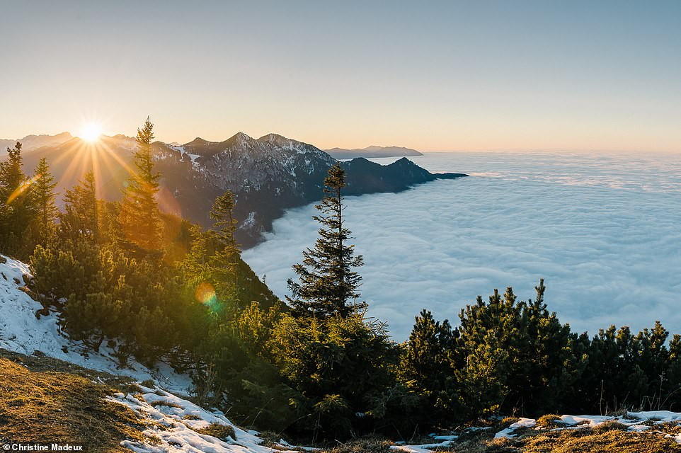 A mesmerising cloud inversion near Walchensee - one of the largest Alpine lakes in Germany at 6.3 square miles - which is nestled close to the town of Kochel am See. Inversions occur when cold, moist air is trapped below warm, dry air, causing low-level clouds