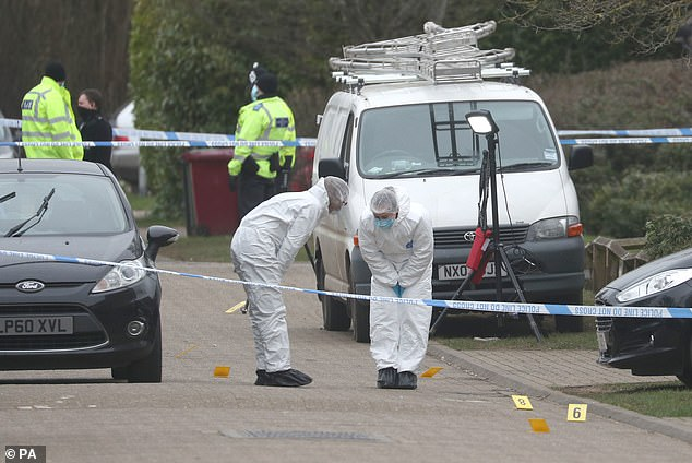 Today's murder comes just over a week after a 26-year-old man was stabbed to death in nearby Tilehurst, the two deaths are not being linked at this stage. Police remain at Malagua Close today