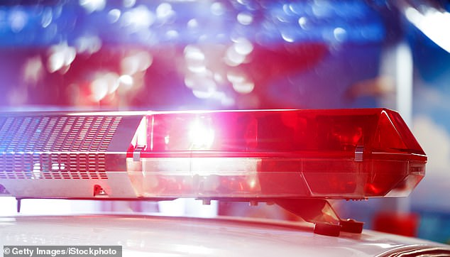 Police officers from Skagit County Sheriff's Office were called out to a property in Mount Vernon on Saturday around 5.25pm after reports of a fight breaking out. A few minutes later a second call was lodged with police from a man who said his friend had been shot (stock image)