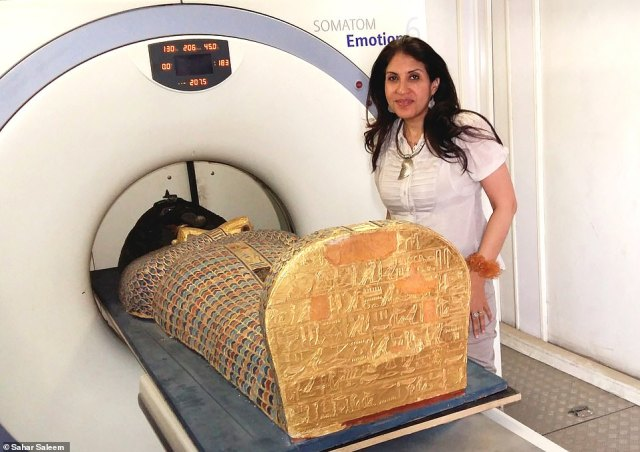 A pharaoh who ruled southern Egypt 3,576 years ago was captured in battle against a foreign dynasty occupying the north and ceremonially executed, a study found. Pictured, palaeoradiologist Sahar Saleem of Cairo University poses with the mummy in the scanner