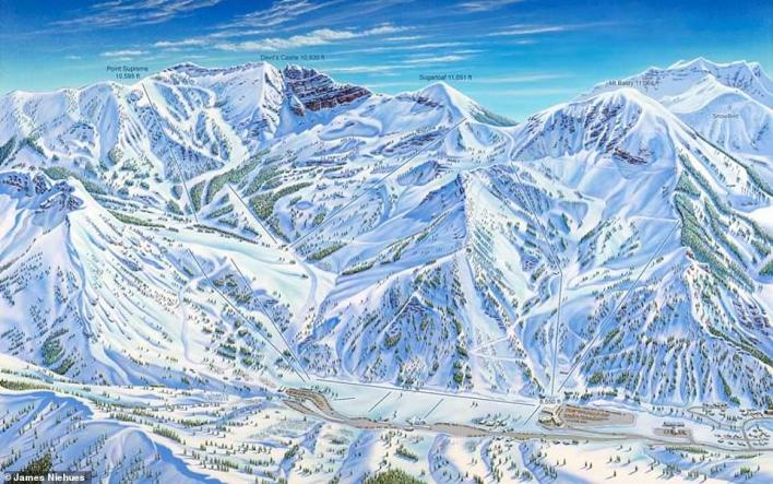 Niehues told MailOnline Travel that sometimes the job of painting the trees feels overwhelming – he's painted millions now - but he says that 'eventually the last tree will be complete and the effort is well worth the time'. This is Alta in Utah