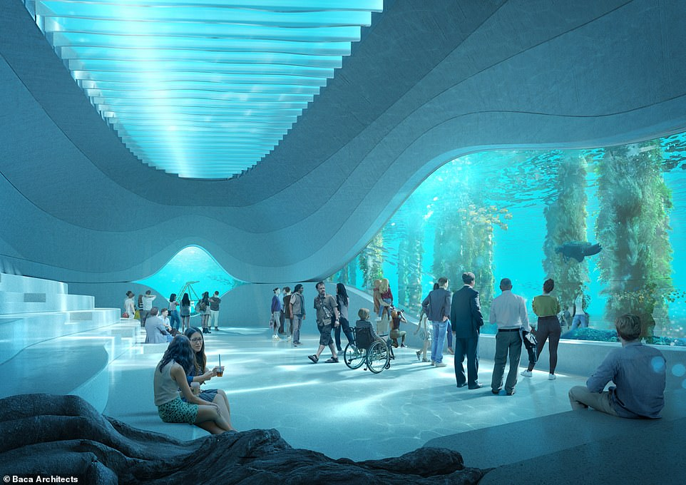 When built, the AU$30million (£16.7million) observatory, called the Australian Underwater Discovery Centre (AUDC), will be the world's largest natural marine observatory with a 900-square-metre (9,687-square-foot) interior. The ocean floor level observatory will be 26ft (8m) below the surface