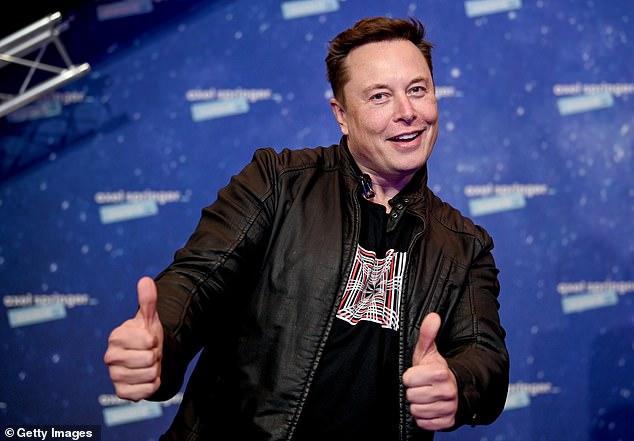 Tesla CEO Elon Musk said on Thursday that bitcoin is 'less dumb' than holding cash