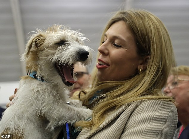 Carrie Symonds holds Dilyn after arriving for the Uxbridge and South Ruislip constituency count declaration at Brunel University in Uxbridge, London, on Friday, December 13, 2019