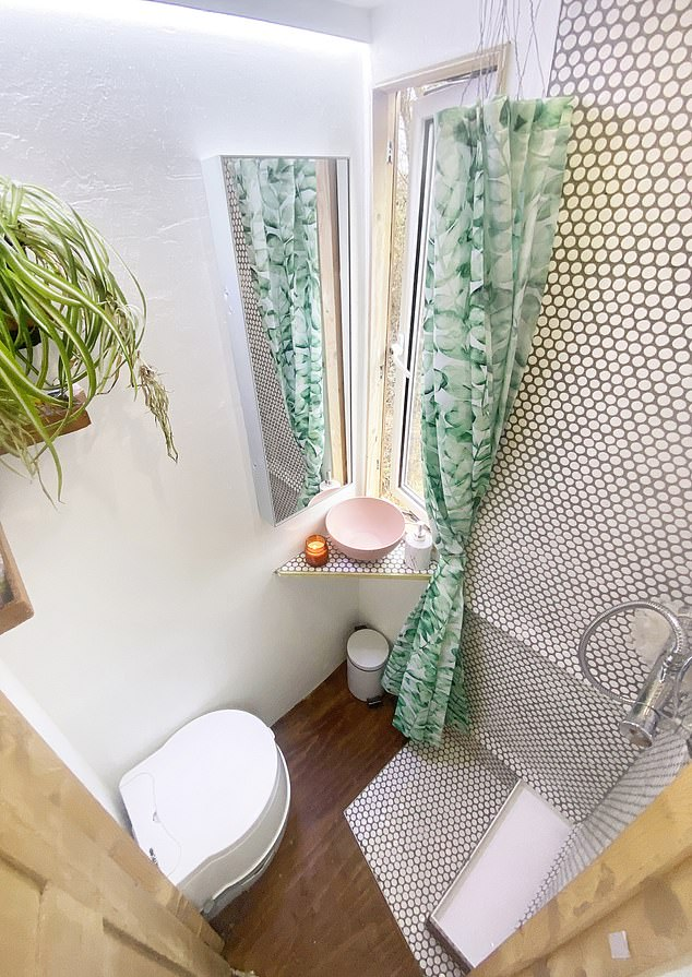 Grooming box: The converted horsebox even features its own bathroom, complete with a shower