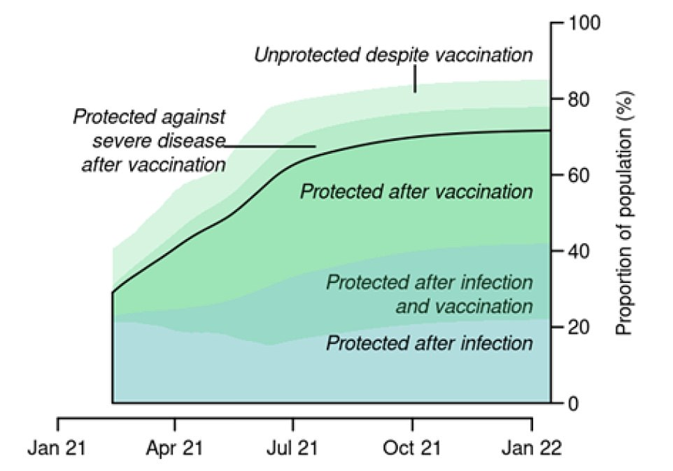 Releasing their modelling of a series of different roadmaps out of lockdown, SAGE warned there would be at least another 30,000 Covid deaths even in the 'most optimistic' scenario. This is because vaccines are not perfect and uptake will never be 100 per cent, meaning millions of vulnerable people will still be unprotected