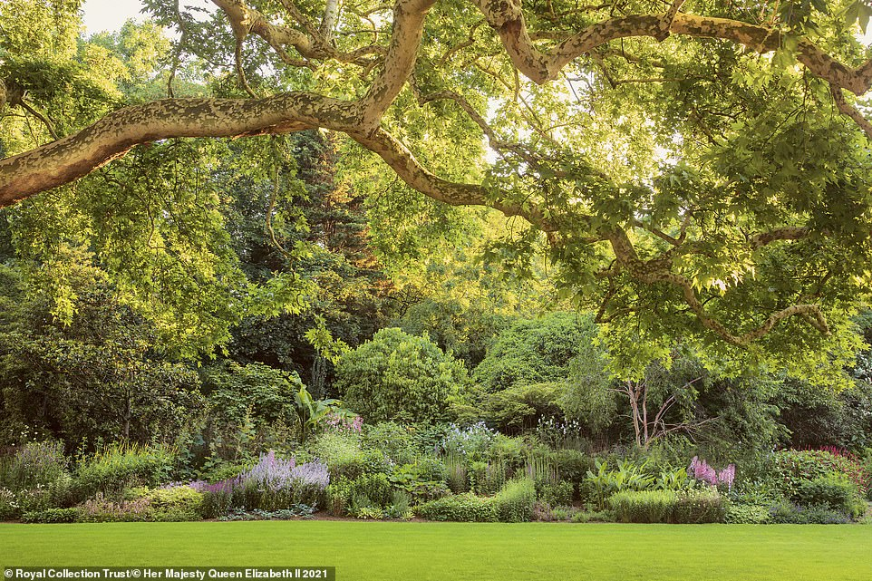 Buckingham Palace's 39-acre garden, which contains wildflower meadows, a rose garden and a three-and-a-half acre lake, is revealed in new behind-the-scenes book Buckingham Palace: A Royal Garden. Pictured: The garden's 523ft long herbaceous border