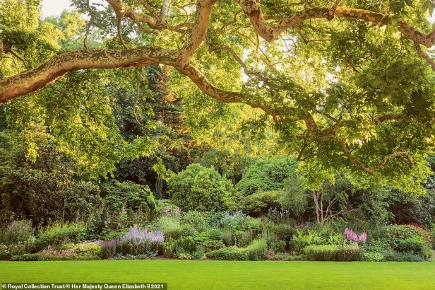 Buckingham Palace's39-acre garden, which contains wildflower meadows, a rose garden and a three-and-a-half acre lake, is revealed in new behind-the-scenes bookBuckingham Palace: A Royal Garden. Pictured: The garden's 523ft long herbaceous border