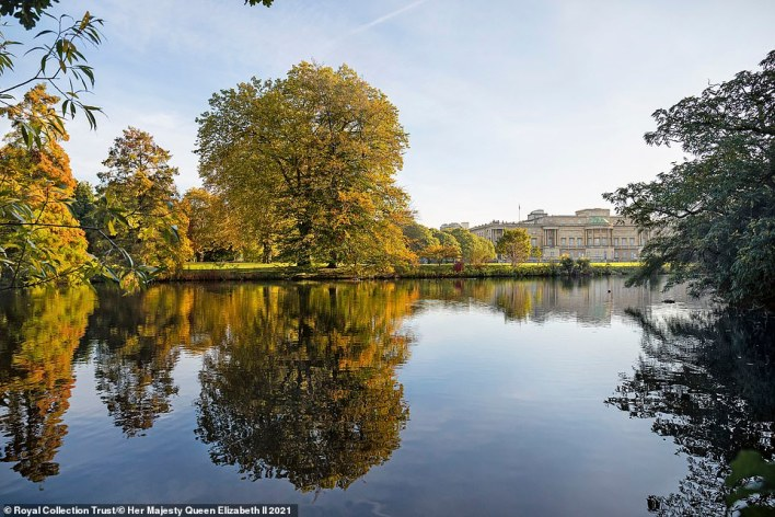 The lake features a waterfall and a secluded island which acts as a haven for wildlife, including five beehives. Pictured: The palace as viewed from the other side of the 3.5acre lake