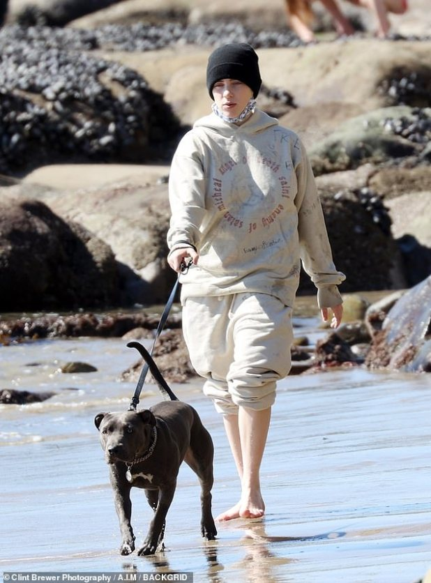 Puppy Love: Hanging out with his collaborating brother and girlfriend Claudio Sulewski, Billie was spotted loose in the sand over the weekend with her dogs Shark and Peaches.