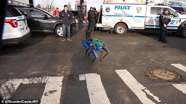 【视频】机器狗替美国警察上街执法,有些人更恐慌了…