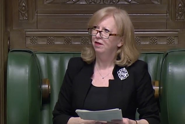 Deputy Speaker Dame Eleanor Laing (pictured) was quick to point out that the MP needed to adhere to the proper dress code when she saw him on screen in the informal outfit