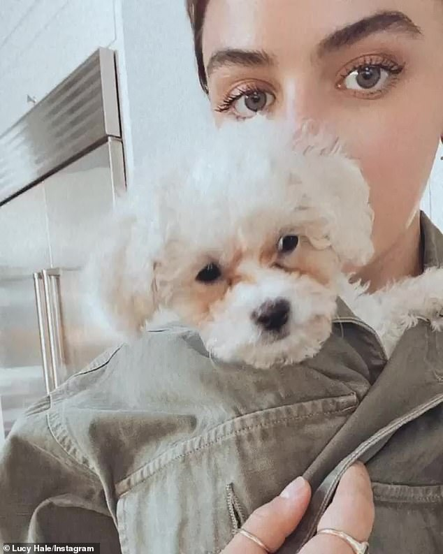 Nueva incorporación: Lucy reveló a principios de este mes que acababa de adoptar una perra llamada Ethel que anteriormente había sido criada nada menos que por Kristen Bell.