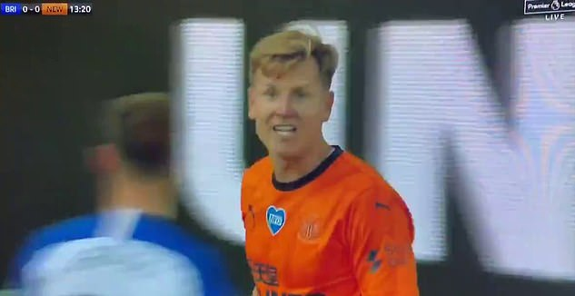 Newcastle's Matt Ritchie was heard expressing his frustration at the linesman