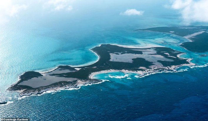A breathtaking private island (pictured) in the Bahamas is set to be auctioned this month with the bidding expected to start at nearly $20million