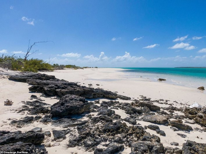 The island features miles of beautiful beaches (pictured) for one lucky buyer