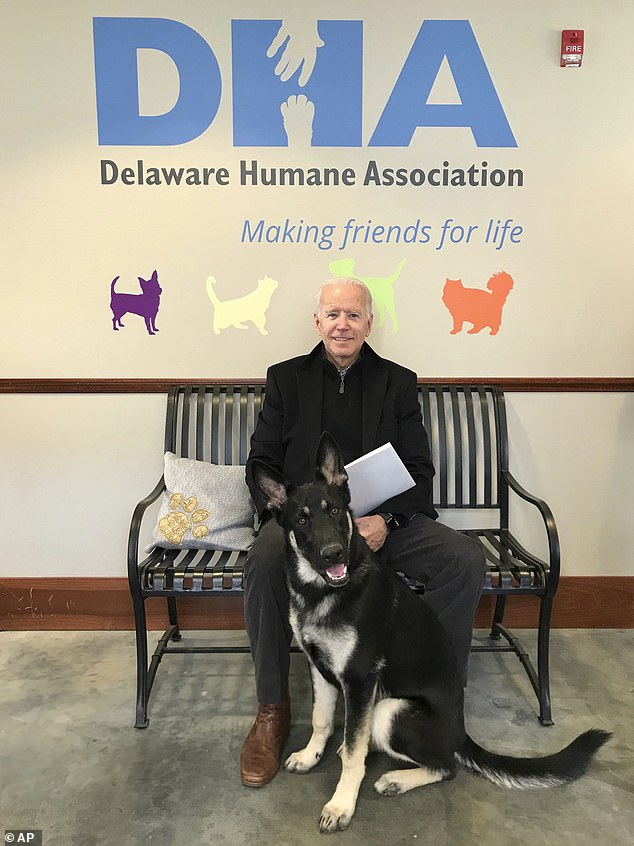 Major was also 'inaugurated' three days before the presidential inauguration. The 'indoguration' featured a performance by Josh Groban, with over 7,400 people watching on Zoom. It raised $200,000 for the Delaware Humane Association