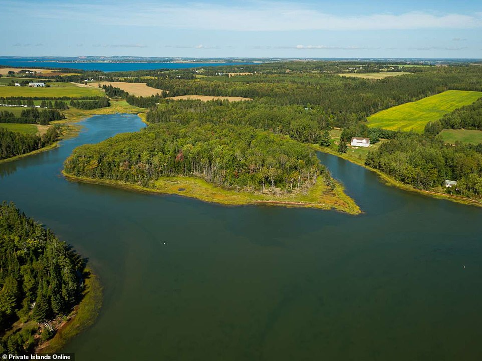 Gillis Island has remained largely untouched since 1750 and comes with a large sandy shorefront