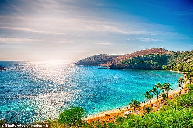 Otherworldly: Suzi recalls her most memorable holiday was to 'idyllic' Hawaii