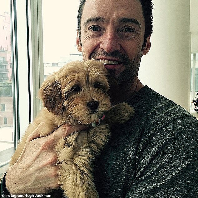 Aww!It comes after the star expressed his love for his beloved pets, dogs Dali and Allegra, on National Puppy Day
