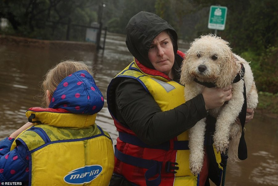 A family and dog rescued by a State Emergency Service crew make it to safety after being trapped by rising floodwaters, as the state of NSW experiences widespread flooding and severe weather, in the suburb of Sackville North in Sydney
