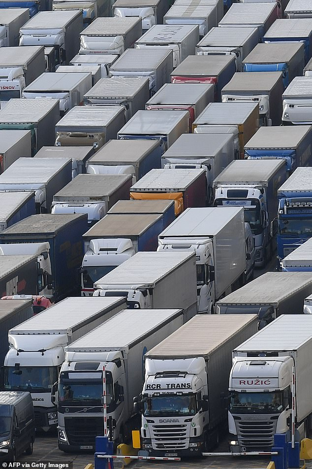 There was huge disruption at Dover in December (pictured) when France imposed similar testing rules on hauliers
