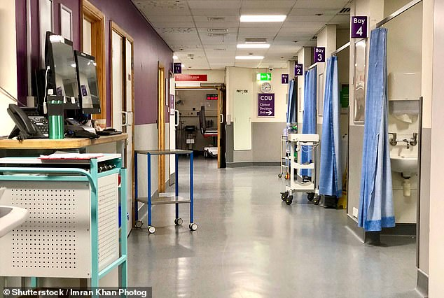 More than a fifth of Covid victims in some English hospitals contracted the disease while being treated for something else (file photo of a hospital ward)