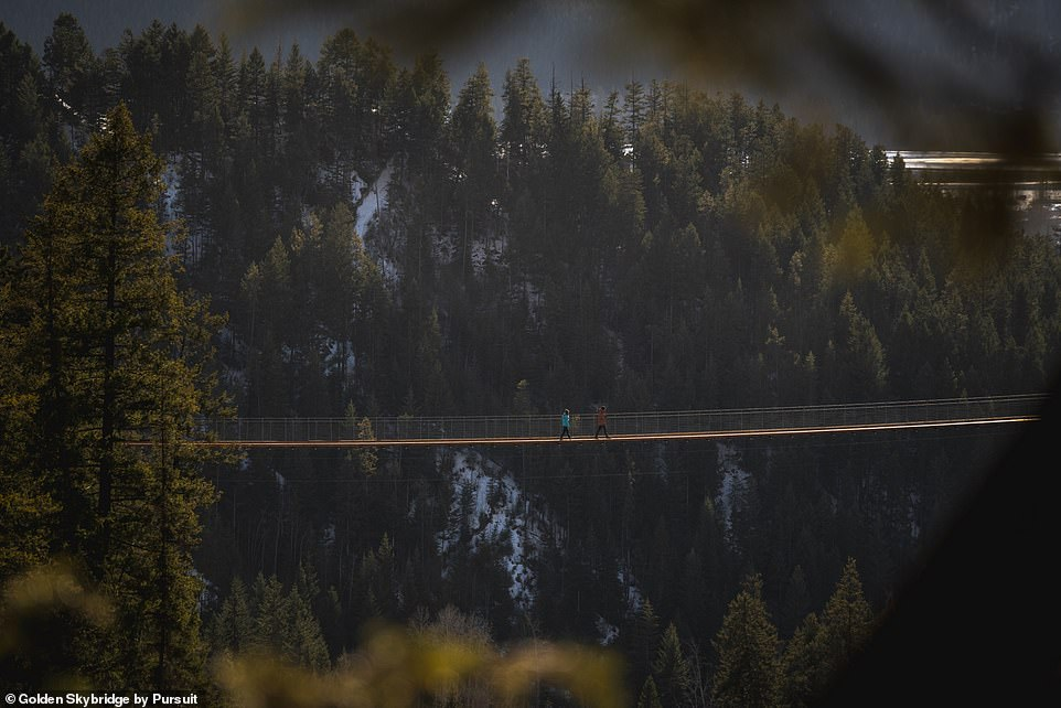 The Golden Skybridge will also feature a tandem bungee swing and 1,200-metre- (3,937ft) zipline spanning the canyon, opening later this summer