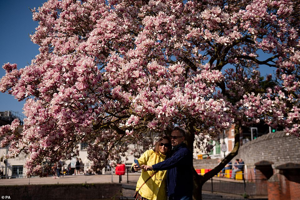 A couple take a selfie underneath a blooming tree in Stratford-upon-Avon in Warwickshire