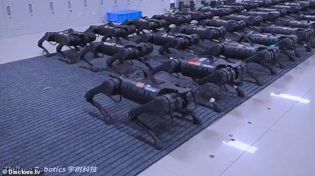 The short video shows dozens of robots crouched down on the floor, but then spring up to a squatting position, lean forward and then return to their original position - all at the same time