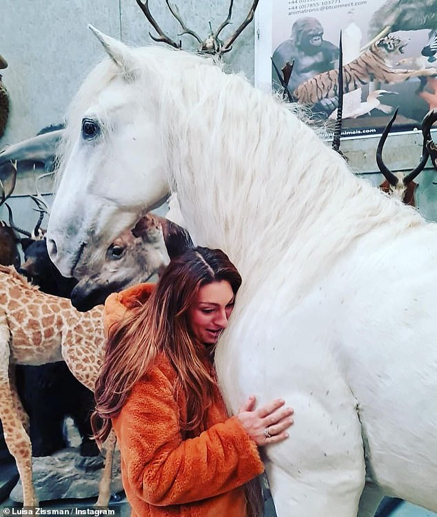 Immortalised: Luisa Zissman has unveiled the stuffed body of her dead horse Madrono, who died in 2019, after she claimed she couldn't bear to let him go