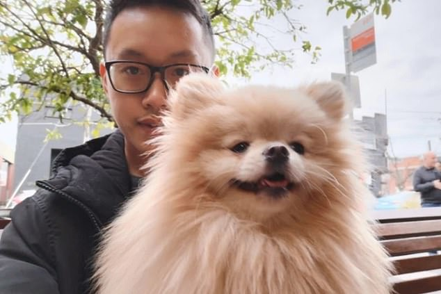 Maurice Chow (pictured) filed a statement of claim for possession of Kobe the Pomeranian after splitting up with his former partner Siwen Chang