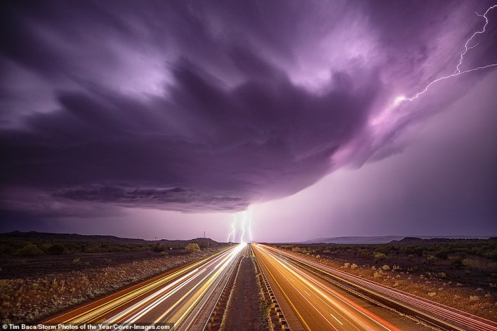This incredible long-exposure image captures flashes of lightning at Cuervo in New Mexico. The photo was taken by Photographer of the Year Tim Baca. The judges said of his work: 'Storm chasing and photographing on the fly can be difficult, but Tim managed to find gorgeous locations to place in front of some epic storms'