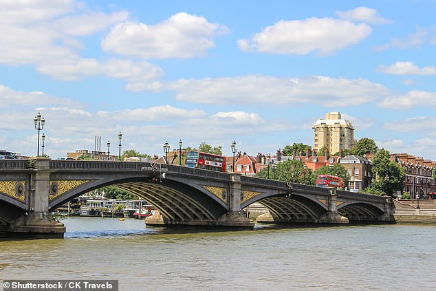 It was later revealed that motorcyclist Christopher Perry, 40, who also died, was drunk and travelling between 74 and 90mph over Battersea Bridge (pictured), a 30mph zone
