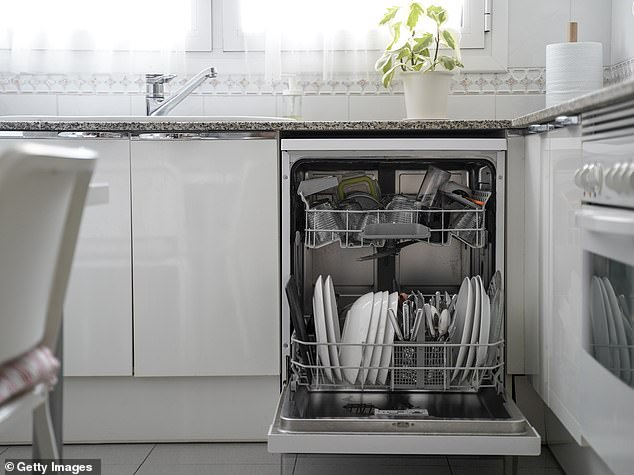 When some of the commenters got a dishwasher at home, they said it was always seen as a luxury item within their household (stock image)