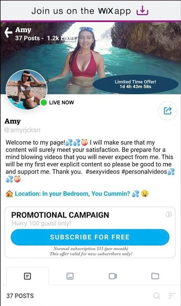 'I will make sure my content will surely meet your satisfaction', the fake OnlyFans profile promised its subscribers