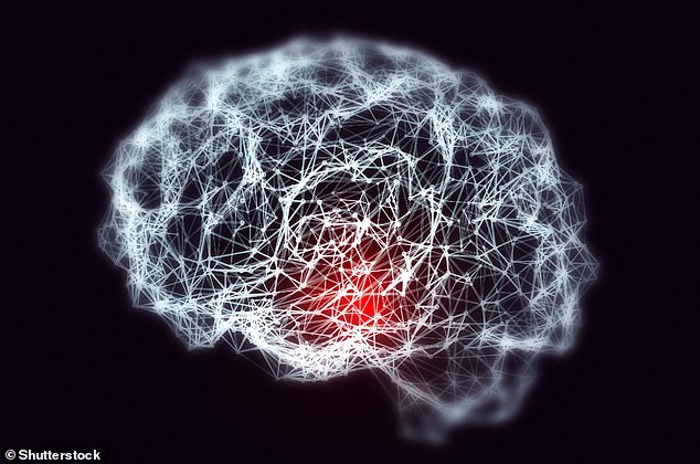 Dementia is a term used to describe the symptoms that occur when there's a decline in brain function.A potential treatment for dementia and epilepsy could look to reduce the amounts of a toxic gas in the brain has been revealed in a new study using rat brain cells (stock image)