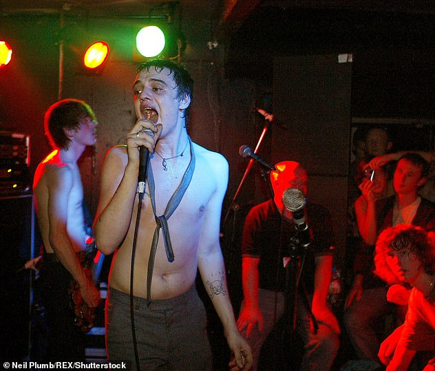 Fame: Babyshambles, pictured here at a concert in Leicester in 2004, won an army of indie fans